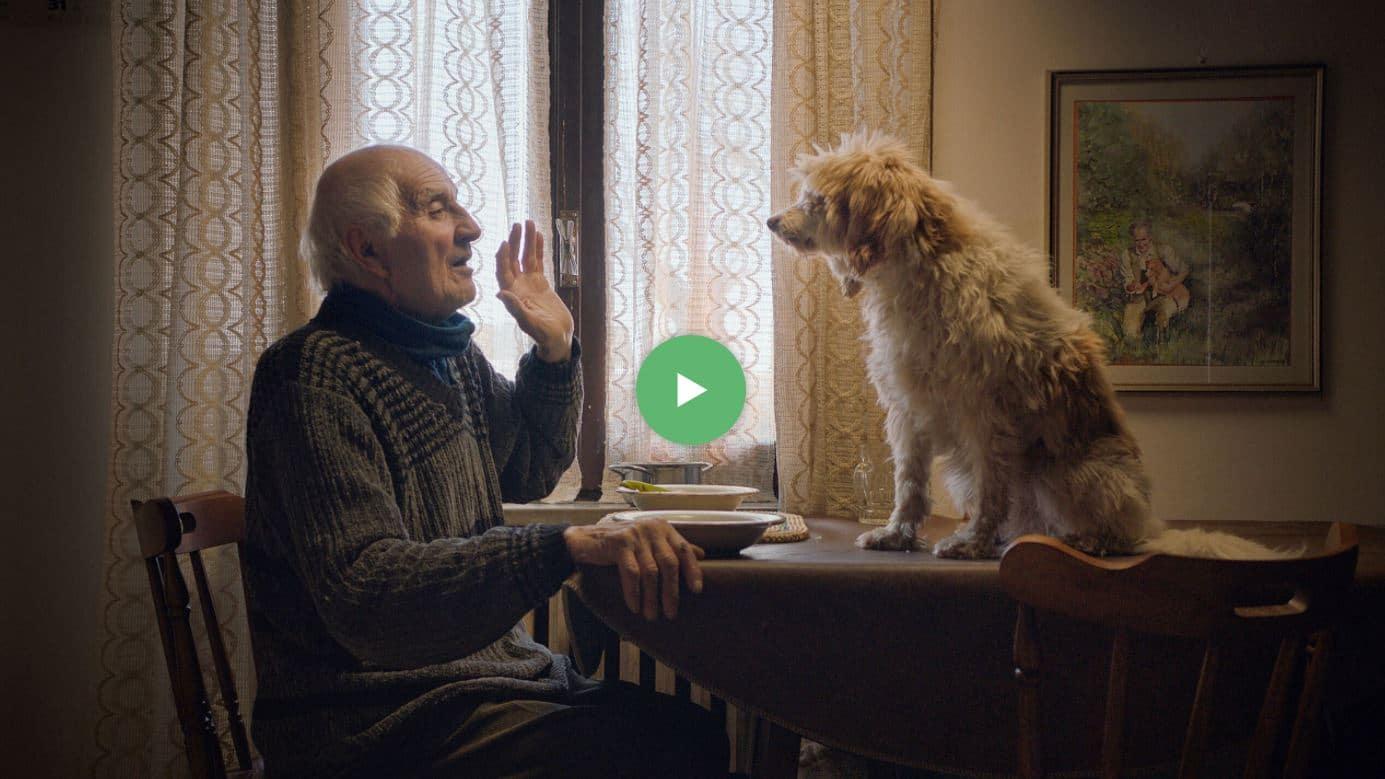 The Truffle Hunters DEM activiteit in de Filmhallen Film voor mensen met dementie Amsterdam Combiwel Buurtwerk